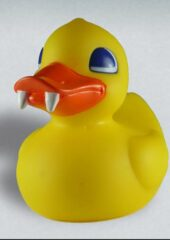 Tub toy duck